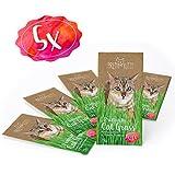 5 bolsas de hierba para gatos PrettyKitty - Paquete de 5 x 25 g de semillas de hierba gatera, alcanza para aproximadamente 50 macetas