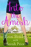 Into the Amish (English Edition)