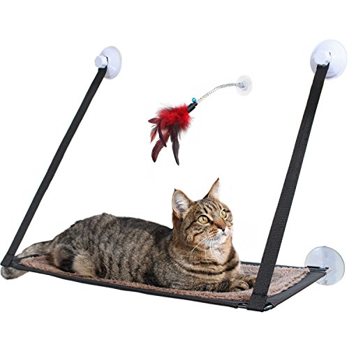 Amazy Katzen Fensterplatz inkl. Federspielzeug – Die Gemütliche Katzenhängematte mit waschbarem Bezug bietet Ihrer Katze Einen spannenden Ausblick Beim Entspannen