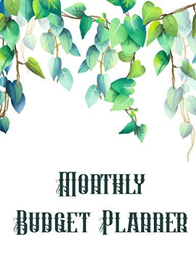 Monthly Budget Planner: 12-Month Budget Planner Book. Budget Organizer Journal Notebook Finance Planner, Money Organizer, Debt Tracker: Volume 1