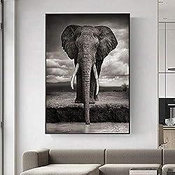 LYQSCL Leinwanddrucke,Nordic Kreative Schwarze Und Weiße Elefanten Tiere Leinwand Malerei Hd-Drucken Poster Wall Art Modern Pop Art Bild Für Wohnzimmer Schlafzimmer Home Decor, 50 cm X 70 cm