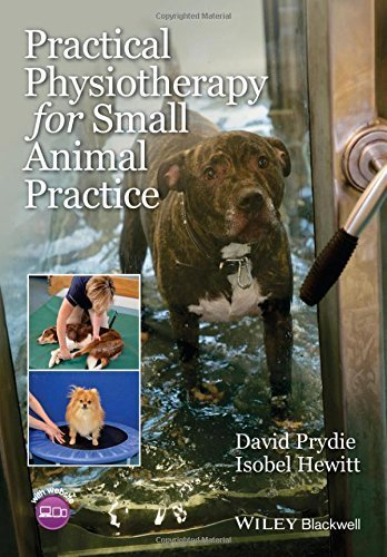 Practical Physiotherapy for Small Animal Practice by David Prydie (2015-09-11)