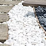 wanda collection 5 Bolsas de Piedras Blancas DE 20 kg