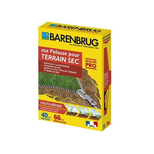 Ma Pelouse Pour Terrain Sec - Barenbrug - 1kg