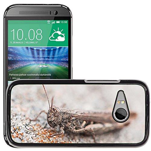 Hülle Case Schutzhülle Cover Premium Case // M00127115 Heuschrecke Tier Insekt Grau Stein // HTC One Mini 2 / M8 MINI / (Not Fits M8) (Heuschrecken Stein)