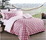 Best queen comforter set - Gifty Engage Polyester Blend Double AC Comforter Review