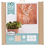 "String Art Kit 12""X12""-Woodland Creatures (Pack of 1 )"