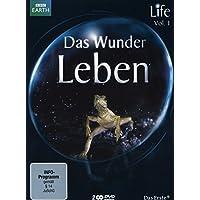 Suchergebnis Auf Amazonde Für Bbc Germany Dvd Blu Ray