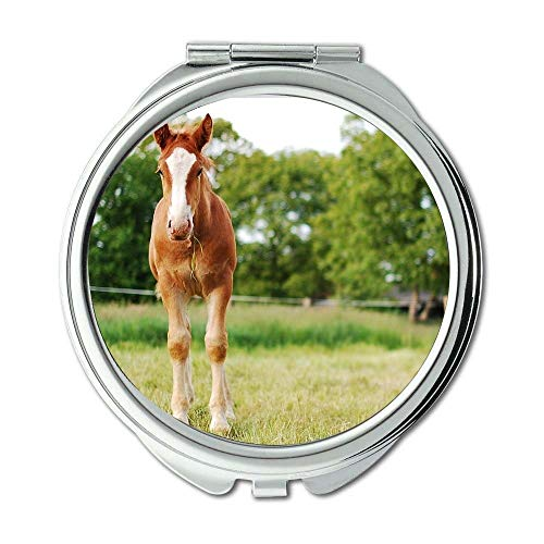 Yanteng Spiegel, Make-upspiegel, Tiertierfotografieunschärfe, Taschenspiegel, tragbarer Spiegel