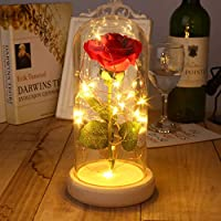 GEESENSS Beauty and The Beast Rose flowers, Red Silk Rose That Lasts Forever in a Glass Dome with 40 LED Lights, Gift for Valentine