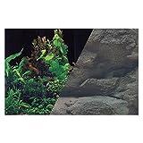 Zolux Poster Fond Décor Découpé pour Aquarium Roche/Noir 50 x 80 cm