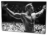 Arnold Schwarzenegger Format: 120x80 Leinwandbild, TOP-Qualität! Wand-Bild erhältlich von klein bis groß (XXL) made in Germany! Preiswerter fertig gerahmter Kunst-Druck zum Aufhängen - tolles und einzigartiges Motiv. Kein Poster oder Plakat!