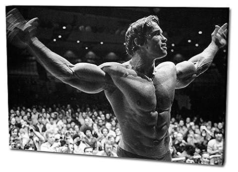 Arnold Schwarzenegger Format: 120x80 Leinwandbild, TOP-Qualität! Wand-Bild erhältlich von klein