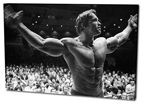 Farb-kunst-druck (Arnold Schwarzenegger Format: 120x80 Leinwandbild, TOP-Qualität!)