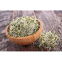 BIO - Brócoli germinando semillas orgánicas certificadas - 3000 semillas
