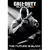 (13x 19) Call of Duty Black Ops 2Stealth Video Game Poster