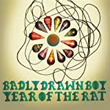 Picture Of Year Of The Rat by Badly Drawn Boy