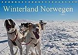 Winterland Norwegen (Tischkalender 2019 DIN A5 quer): Dort, wo man den Winter noch erleben kann. (Geburtstagskalender, 14 Seiten ) (CALVENDO Natur) - Paul Linden