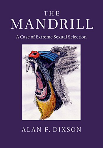The Mandrill: A Case of Extreme Sexual Selection (English Edition)