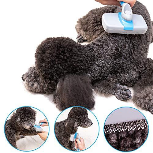 Zoom IMG-2 osazic spazzola autopulente per cani