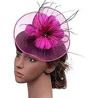 zZZ Foto De La Boda Simple Británica Señora Partido De Lino Sombrero De La Pluma De Banquetes Flor Headwear Sombrero Occidental Al Aire Libre 22 * 20cm Comodidad. (Color : Pink)