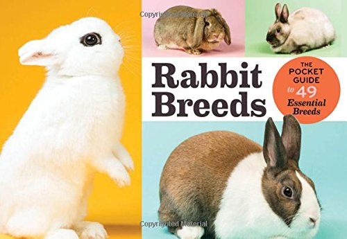 rabbit-breeds