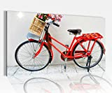 Acrylglasbild 80x50cm Fahrrad rot Blume Retro Kunst Glasbild Bilder Acrylglas Acrylglasbilder Wandbild 14D140, Acrylglas Größe4:80cmx50cm