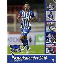 Hertha BSC Posterkalender - Kalender 2018