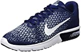 Nike Herren Air Max Sequent 2 Turnschuhe, Blau (Binary Blue/White/Blue Moon/Lt Armory Blue/Volt), 45 EU