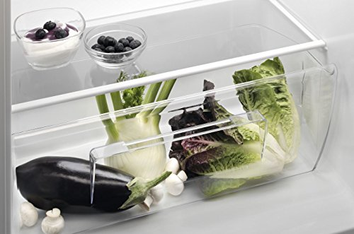 Aeg Customflex Kühlschrank : Aeg kuehl gefrier kuehlschrank ratgeber infos top produkte