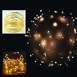 100 er LED Mikro Lichter auf Draht - gold - biegsame Lichterkette warmweiß mit Batteriefach