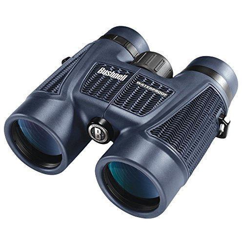 Bushnell H20 Roof Prism - Prismáticos impermeables (8x, 42 mm)