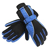Terra Hiker Womens Waterproof Ski Gloves, Thermal Thinsulate Gloves for Skiing, Snowboarding,Cycling and Other Winter Sports(Blue,S)