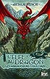 Elfe au Dragon T 1 les Maraudeurs d'Isuldain