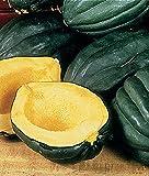 PLAT FIRM GRAINES DE GERMINATION: 50 - Samen: Eichel oder Tabelle Königin Squash Seeds - WOW !!! Sehr fruchtbar! - geben SIE SCHIFF FREI !!!
