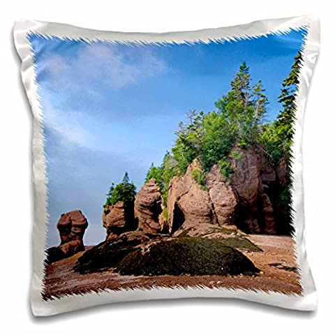 Danita Delimont - Rock Formations - New Brunswick, Bay of Fundy. Hopewell Rocks-CN04 CMI0080 - Cindy Miller Hopkins - 16x16 inch Pillow Case (pc_74733_1)