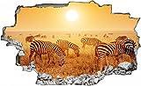 Zebra Herde Afrika Safari Wandtattoo Wandsticker Wandaufkleber C0296 Größe 60 cm x 90 cm