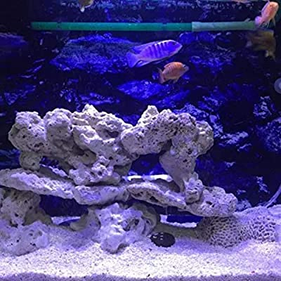 zhengyisho0p Éclairage d'aquarium à LED pour Aquarium avec Commande Tactile pour récif de Corail Noir