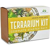 Kit de Terrario para Plantas Suculentas y Cactus Incluye Suelo de Cactus, Musgo, Grava y Guía Paso a Paso