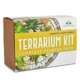 Kit terrario per piante grasse e cactus. Include terreno per cactus, muschio, ghiaia e guida passo dopo passo.