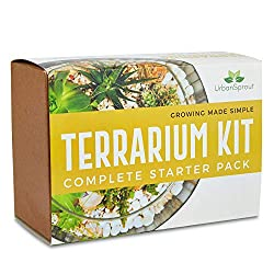 Plant Terrarium Kit for Succulent Plants and Cacti. Includes Cactus Soil, Moss, Gravel and Step-by-Step Guide
