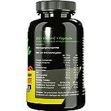 ZEC+ Vitamin C HOCHDOSIERT 500mg | mit naturbelassenem Hagebuttenextrakt | stärkt das Immunsystem | kann Skorbut vorbeugen | 240 Kapseln - 2