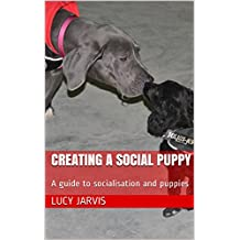 Creating a Social Puppy: A guide to socialisation and puppies
