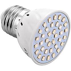 JIALUN- LED 250Lm E27 / E26 36LED 2835SMD 3W Rot-Blau Led Wachsen Lampen Pflanzenwachstum Licht (AC 220 V/AC 110 V) (Size : 220V)