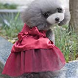 Sommer-Hundekleid Welpen Hot Bohren Hochzeitskleid Spitze Doggy Rock