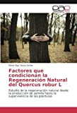 Factores que condicionan la Regeneración Natural del Quercus robur L: Estudio de la regeneración natural desde la producción de semilla hasta la supervivencia de las plántulas