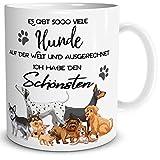 TRIOSK Geschenk Tasse mit Hund für Hundeliebhaber und lustiger Spruch Es gibt so viele Hunde