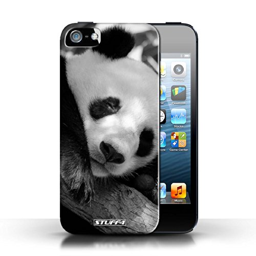 Hülle Case für Apple iPhone 5/5S / Faultier Entwurf / Zoo-Tiere Collection Pandabär