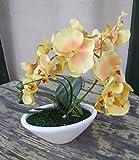 Künstliche Orchidee gelb im ovalen Gefäß ca.30cm
