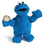 Nici 41351Sesame Street Cookie Monster 35cm Floppy,